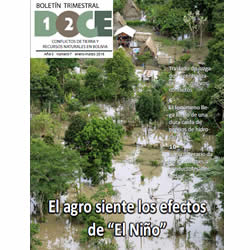 Boletín Trimestral DOCE N° 7: Conflictos de tierra y recursos naturales en Bolivia