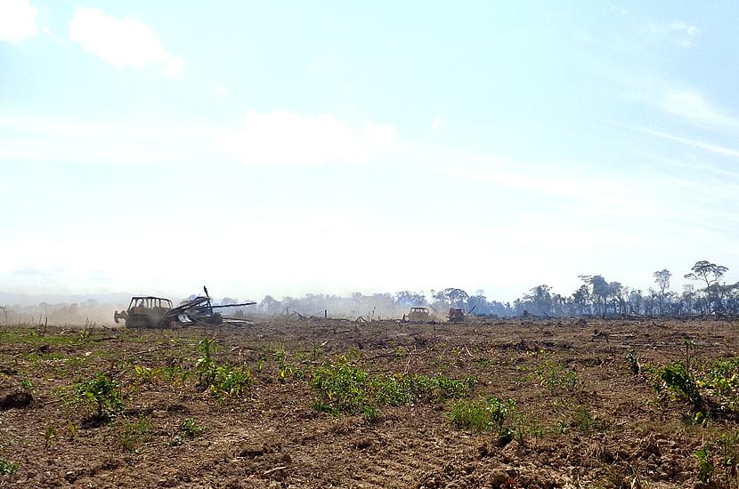 Preperación de la tierra para el cultivo de caña en los predios de EASBA.