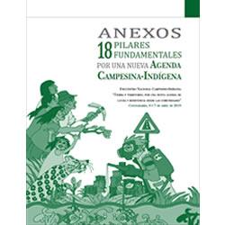 Anexos 18 Pilares Fundamentales para una agenda campesina-indígena