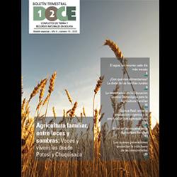 Boletín DOCE Nº 19: Agricultura familiar, entre luces y sombras