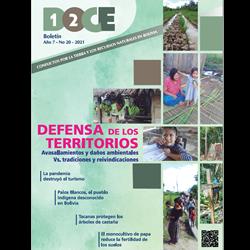 Boletín DOCE Nº 20: Defensa de los territorios